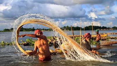 উত্তরের কৃষকদের স্বপ্ন দেখাচ্ছে 'সোনালি আঁশ'