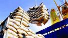 এবার ভারত থেকে জি-টু-জিতে চাল আমদানির সিদ্ধান্ত