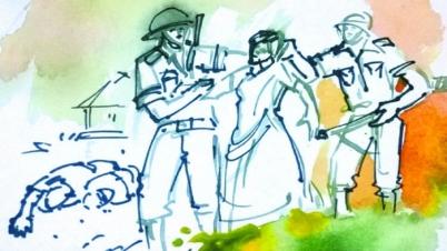 মুক্তিযোদ্ধার স্বীকৃতি পেলেন আরও ১৬ বীরাঙ্গনা