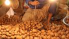 আলু সিন্ডিকেটকারীদের বিরুদ্ধে ব্যবস্থা নিতে ডিসিদের চিঠি