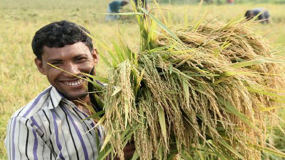 ২৬ হাজার কোটি টাকা ঋণ পাচ্ছে কৃষকরা