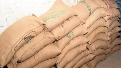 জেলেদের জন্য আরও প্রায় ১০ হাজার টন চাল দিচ্ছে সরকার