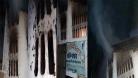 মিষ্টি দোকান থেকে বেরিয়ে এলো লক্ষ লক্ষ তেলাপোকা!