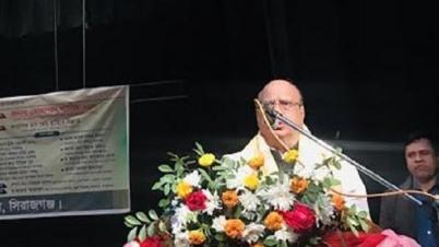 দেশে সাংস্কৃতিক বিপ্লব ঘটাতে কাজ করেছে সরকার: নাসিম