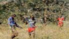 ভারতে ৩ কিলোমিটার দীর্ঘ পঙ্গপালের ঝাঁক, সতর্কতা জারি