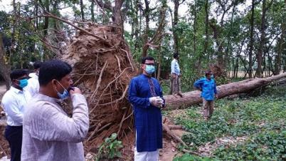'শেখ হাসিনা বাংলাদেশকে পুনরায় বিশ্ব আসনে সমাদৃত করেছেন'