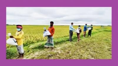 করোনায় বেকার ১৫ হাজার মানুষকে কাজ দিলেন হবিগঞ্জের ডিসি