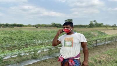 ডিজিটাল সেবার বদৌলতে সুফল পাচ্ছে চুয়াডাঙ্গার কৃষকরা