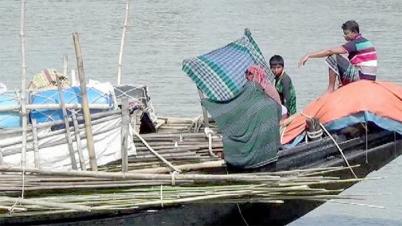 জাটকা সংরক্ষণে কাল থেকে ৬ জেলায় মাছ ধরা নিষিদ্ধ